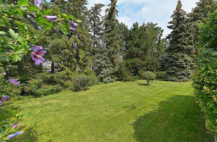 25 SHADY LAWN COURT, MISSISSAUGA